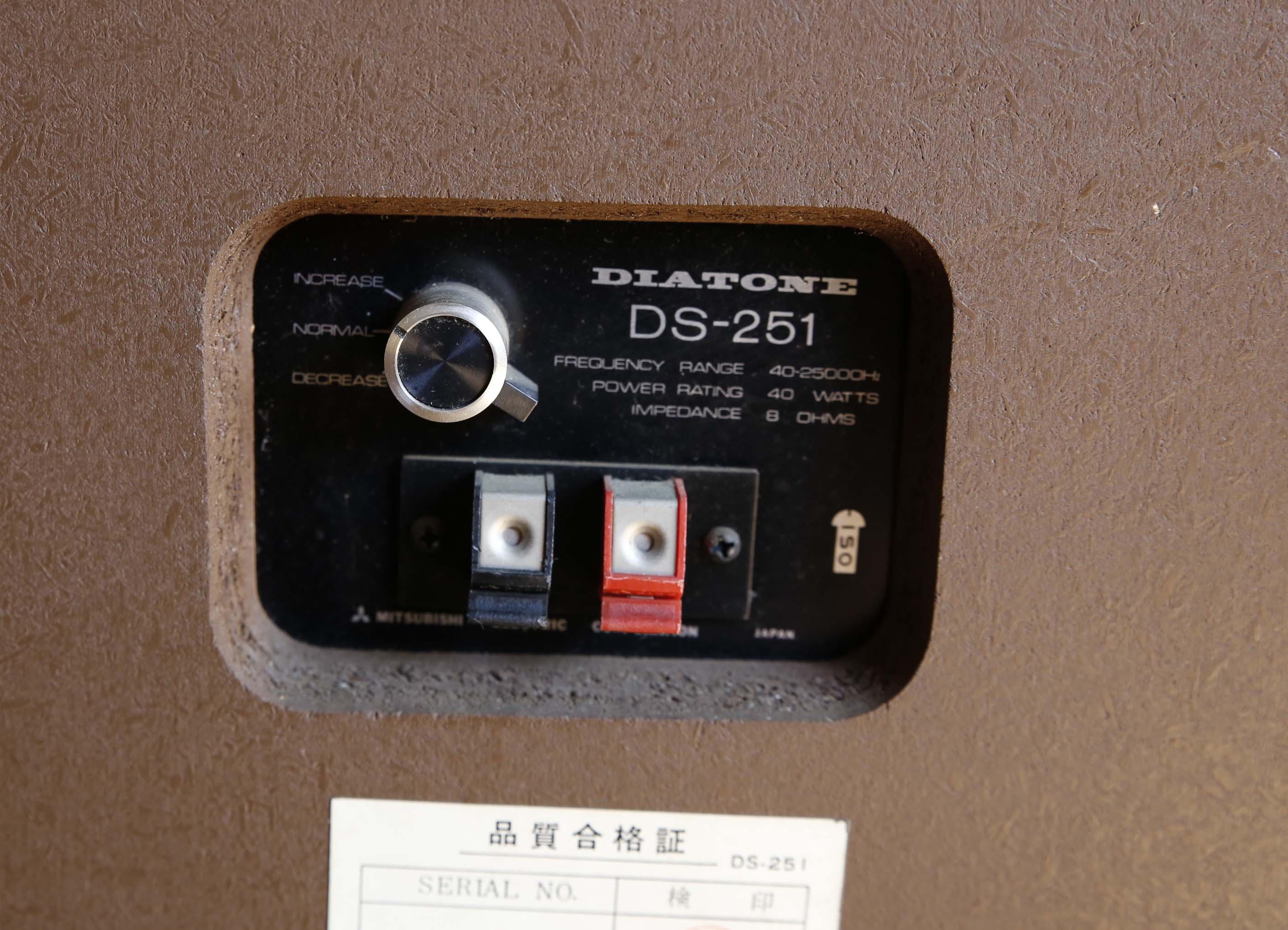 DS251c