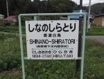 shiratori07.jpg