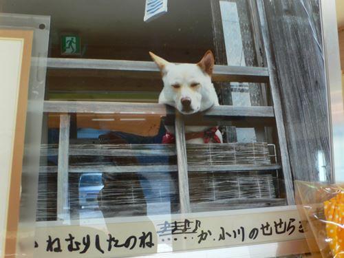 dorokyoukumanogawa1103013_R.jpg
