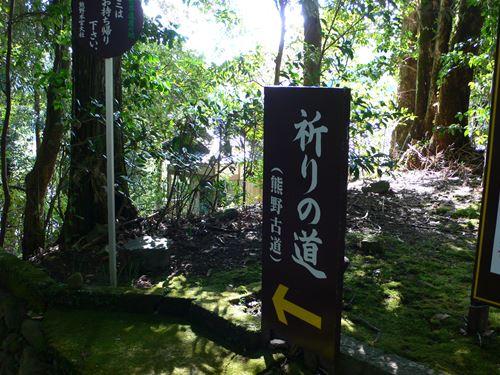 kumanokodou1103005_R.jpg