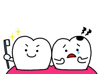 1021歯
