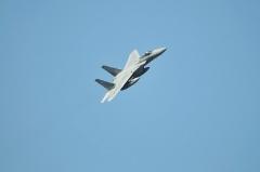 Hyakuri AB_F-15J_438