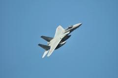 Hyakuri AB_F-15J_439