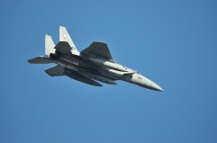 Hyakuri AB_F-15J_442