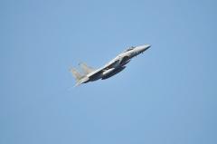 Hyakuri AB_F-15J_443