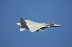 Hyakuri AB_F-15J_445