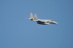 Hyakuri AB_F-15J_446