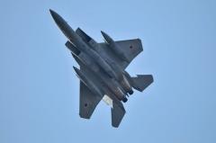 Hyakuri AB_F-15J_452
