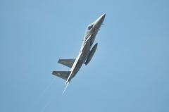 Hyakuri AB_F-15J_449