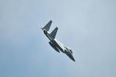 Hyakuri AB_F-15J_450