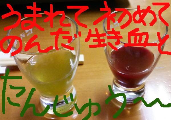 すっぽんの生き血と胆汁の日本酒割り