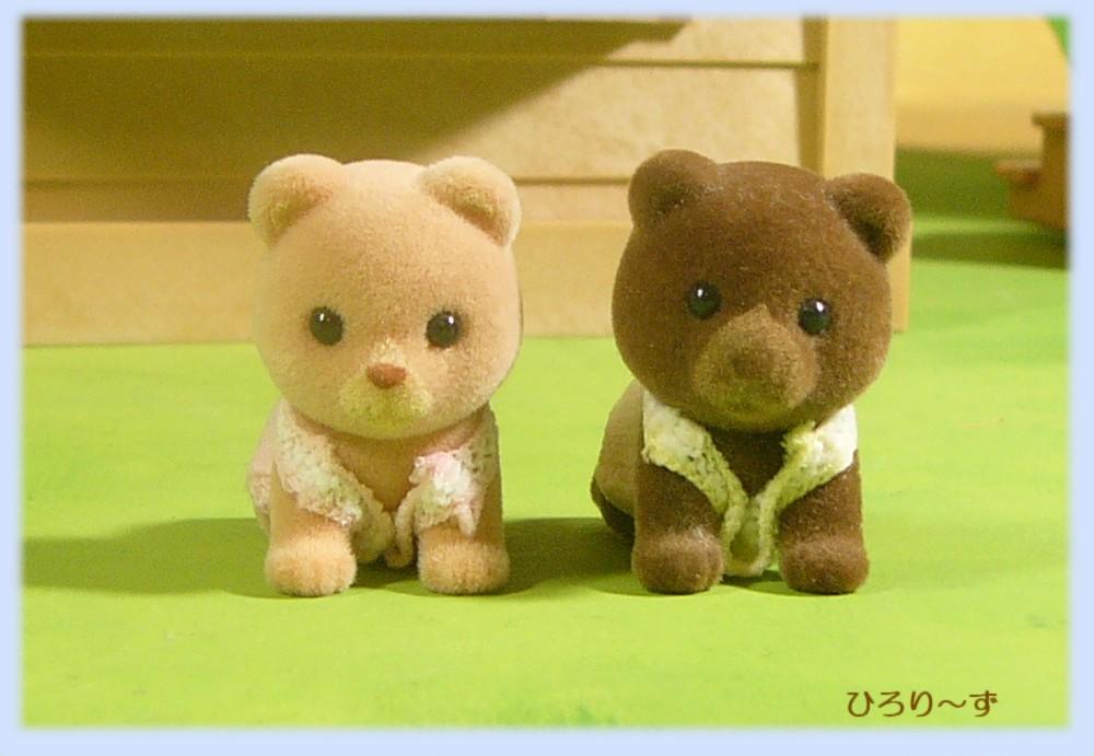 クマ 双子 比較 1