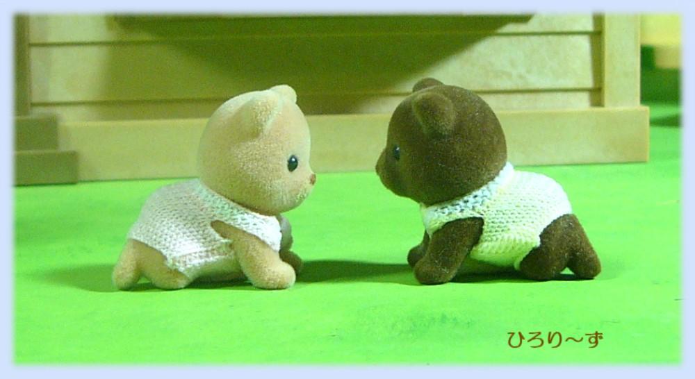 クマ 双子 比較 2