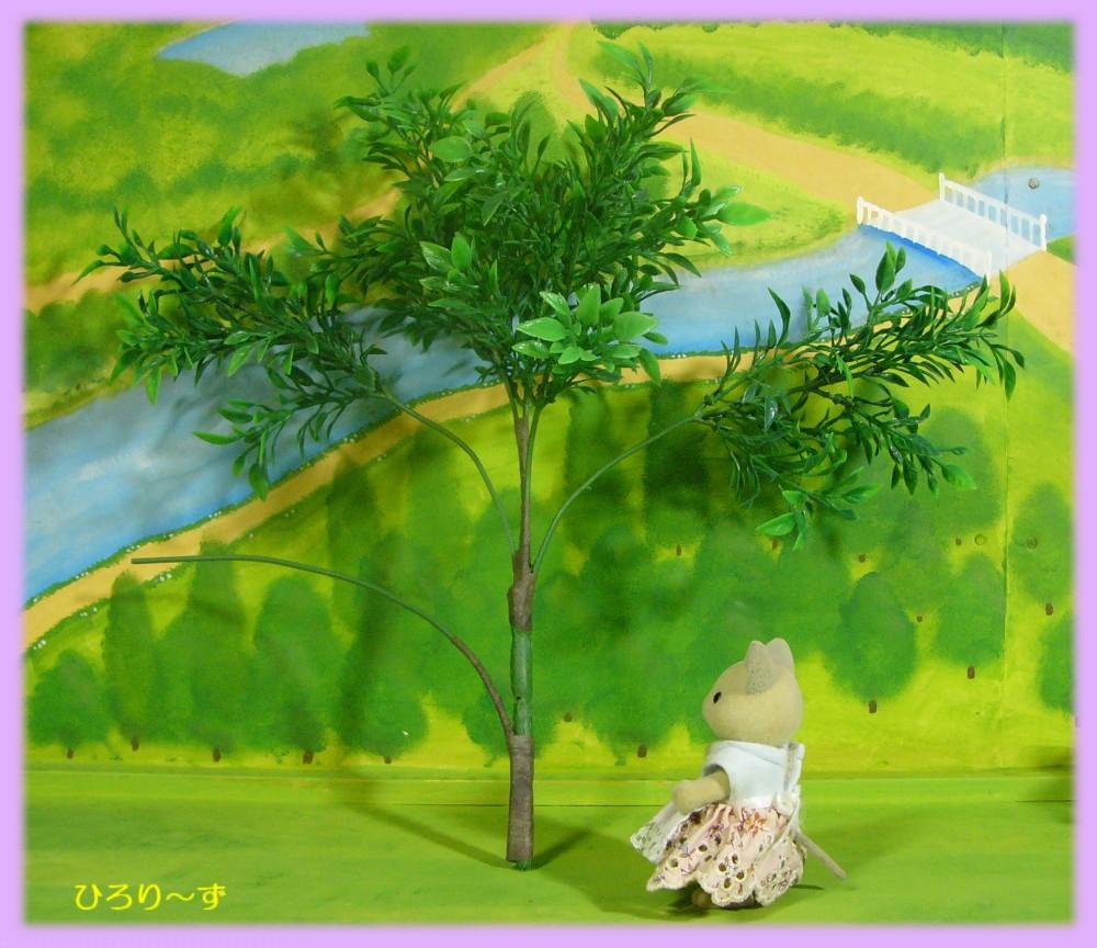 樹木 12