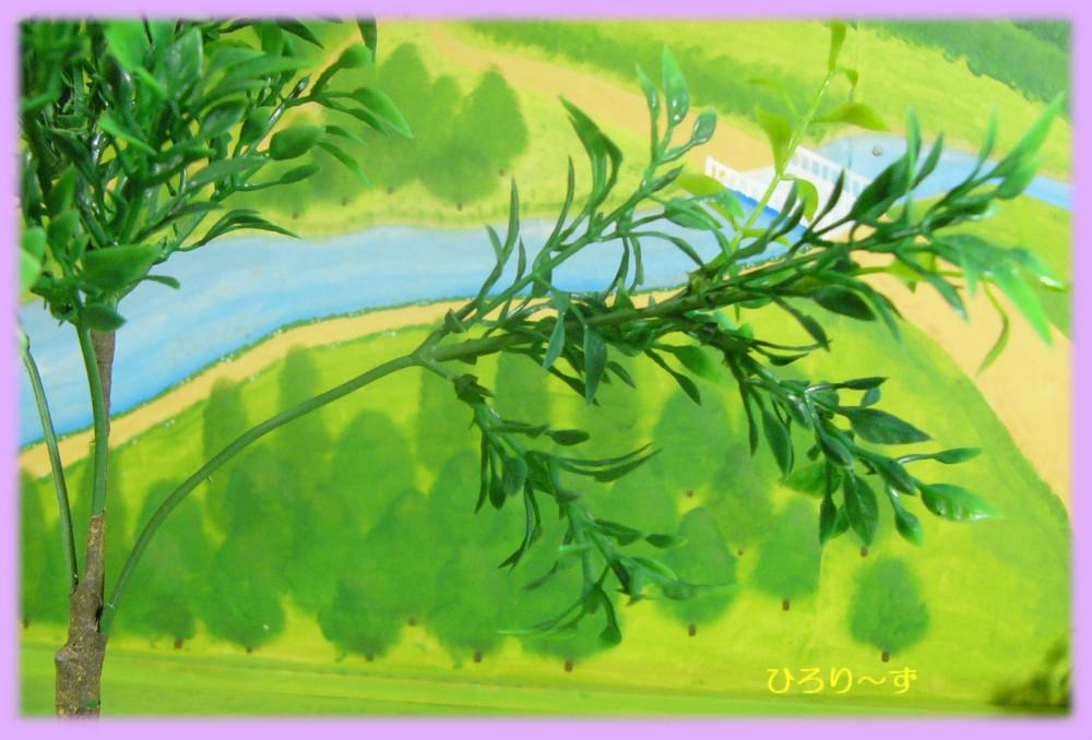 樹木 19