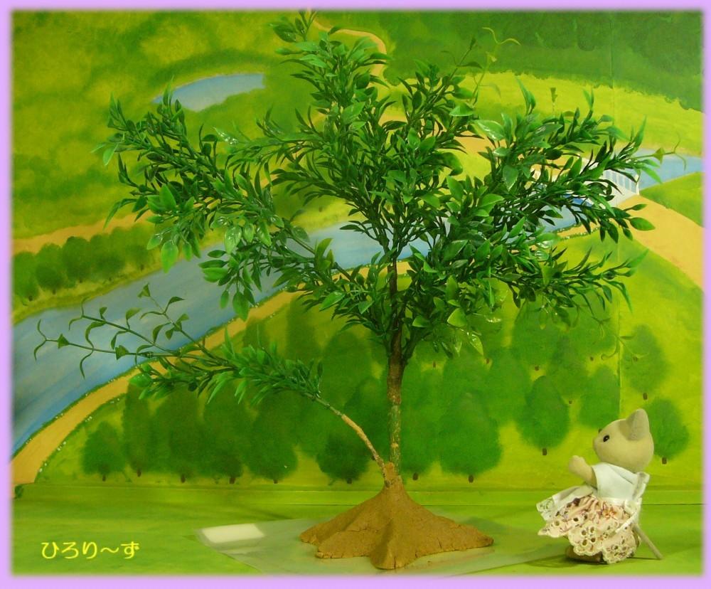 樹木 23