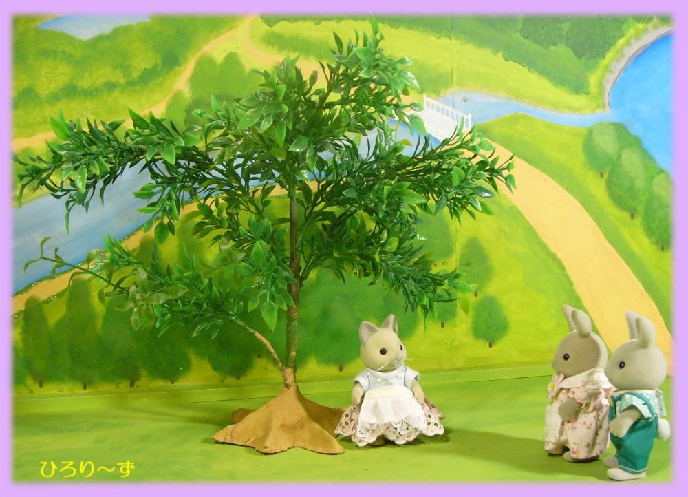 樹木 24