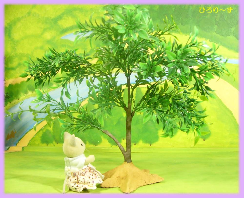 樹木 25