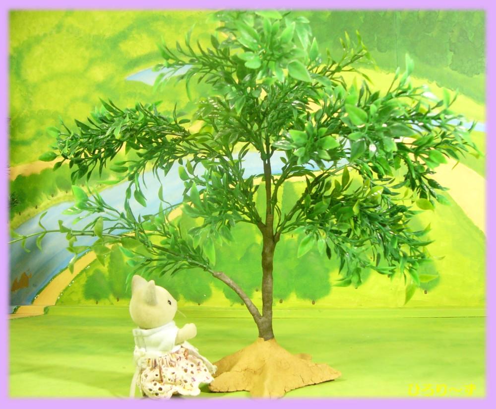 樹木工程 4
