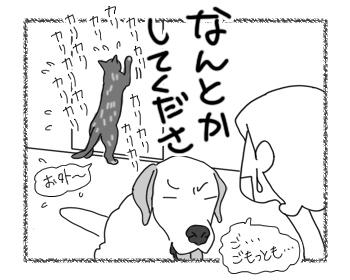羊の国のラブラドール絵日記シニア!!「耐える俺様」4