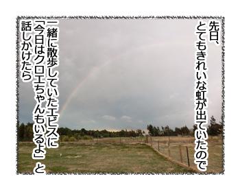 羊の国のラブラドール絵日記シニア!!「虹のこちら側」1