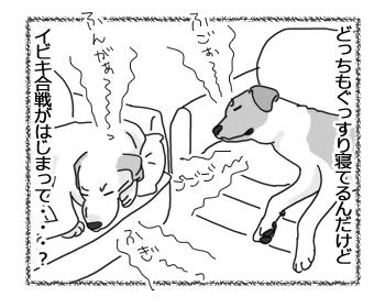 羊の国のラブラドール絵日記シニア!!「夢の中でもライバル!?」3