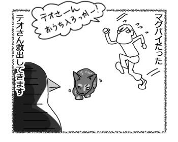 羊の国のラブラドール絵日記シニア!!「テオさん、危機一髪!?」4