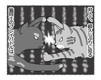 羊の国のラブラドール絵日記シニア!!「みんなのプレイバトル」3