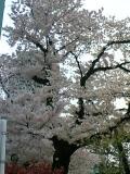 16-04-05_17-32.jpg