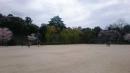 20160403名城公園