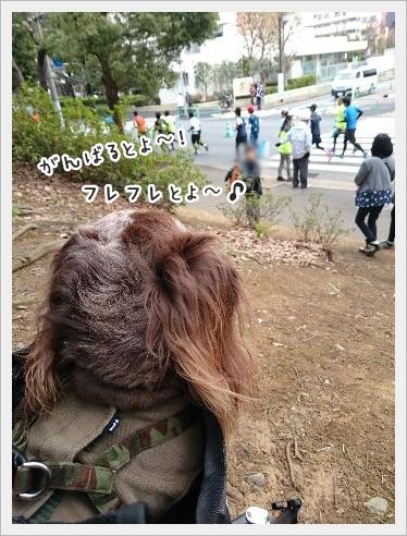 fc2_2016-03-28_05.jpg