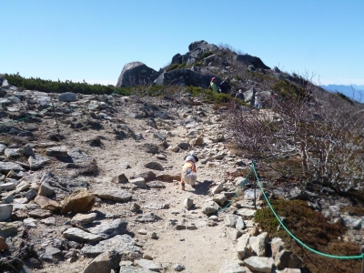 金峰山~ワンコと山歩き 2015年10月26日