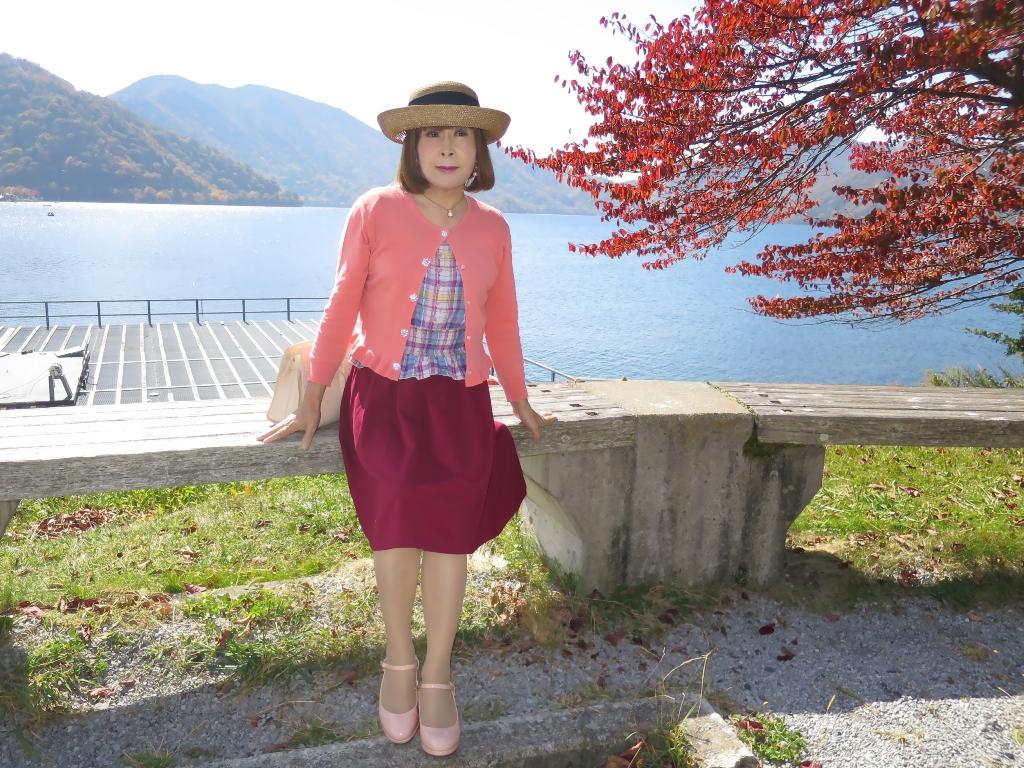 中禅寺湖オレンジカーデA(2)