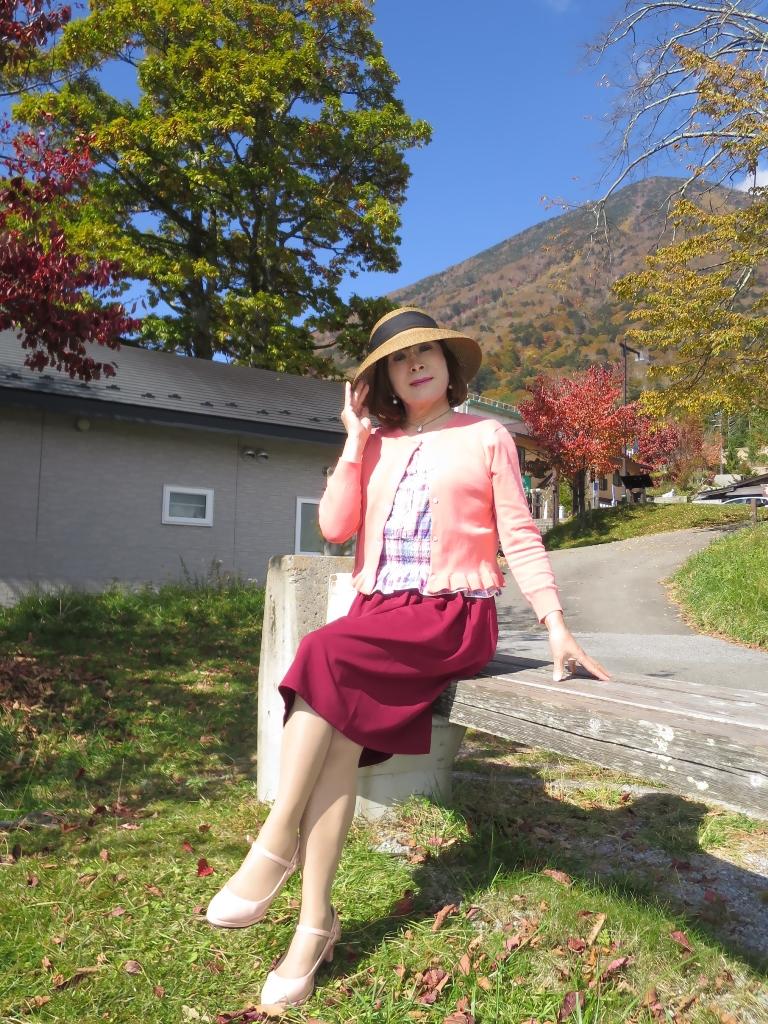 中禅寺湖オレンジカーデC(2)
