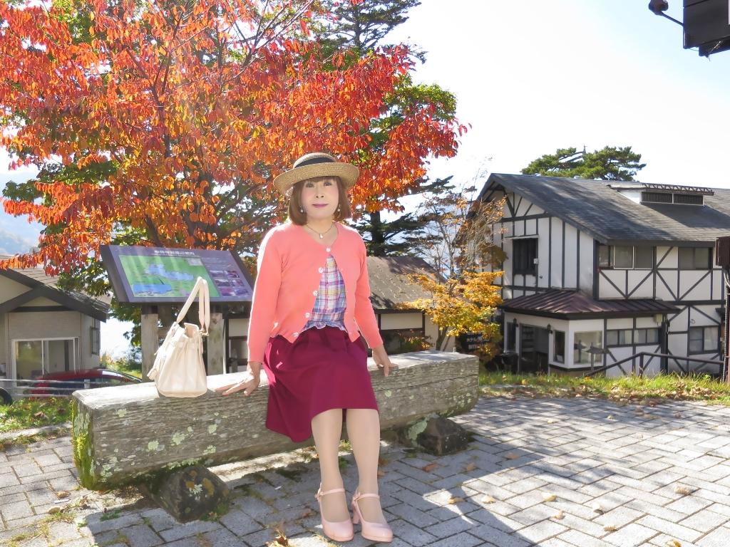 中禅寺湖オレンジカーデC(5)
