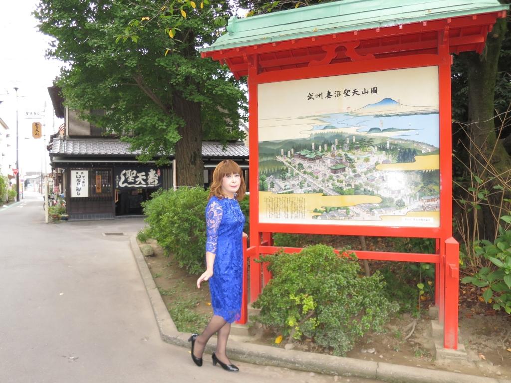 青レースワンピ聖天山B(2)