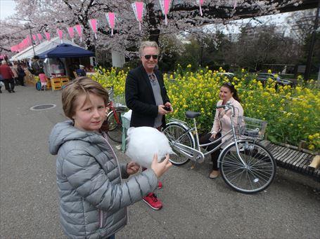 墨堤で花見をエンジョイする外国人家族