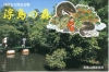 浮島の森01