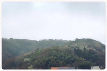 葉山の山1