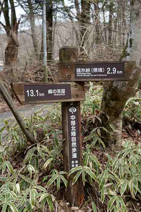 DSC_1876.jpg