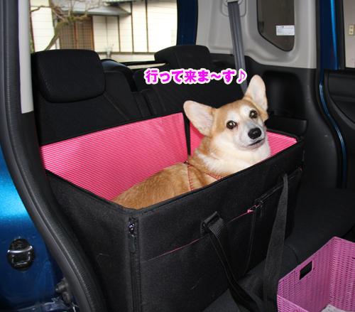 ドライブボックスで