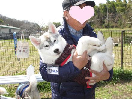 愛ハス☆春の乱