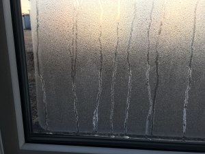 凍結した窓ガラス2