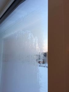 窓ガラスの外側が凍っている