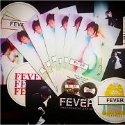 2015_FEVER_総括_ss
