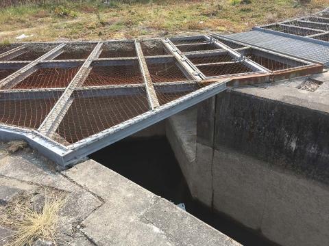 八ヶ村用水から下流側(3)