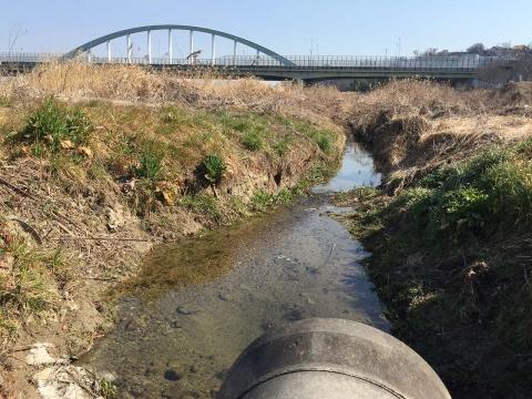 八ヶ村用水から下流側(5)