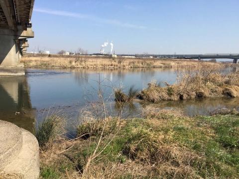 八ヶ村用水から下流側(8)