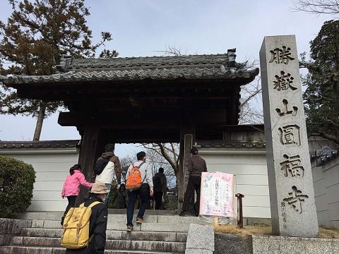 ウォーキング円福寺20130313