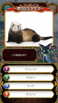 この動物は何?